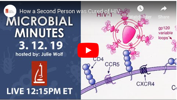 Microbial Minutes: Vaccine and HIV Cure Edition - HMH CDI