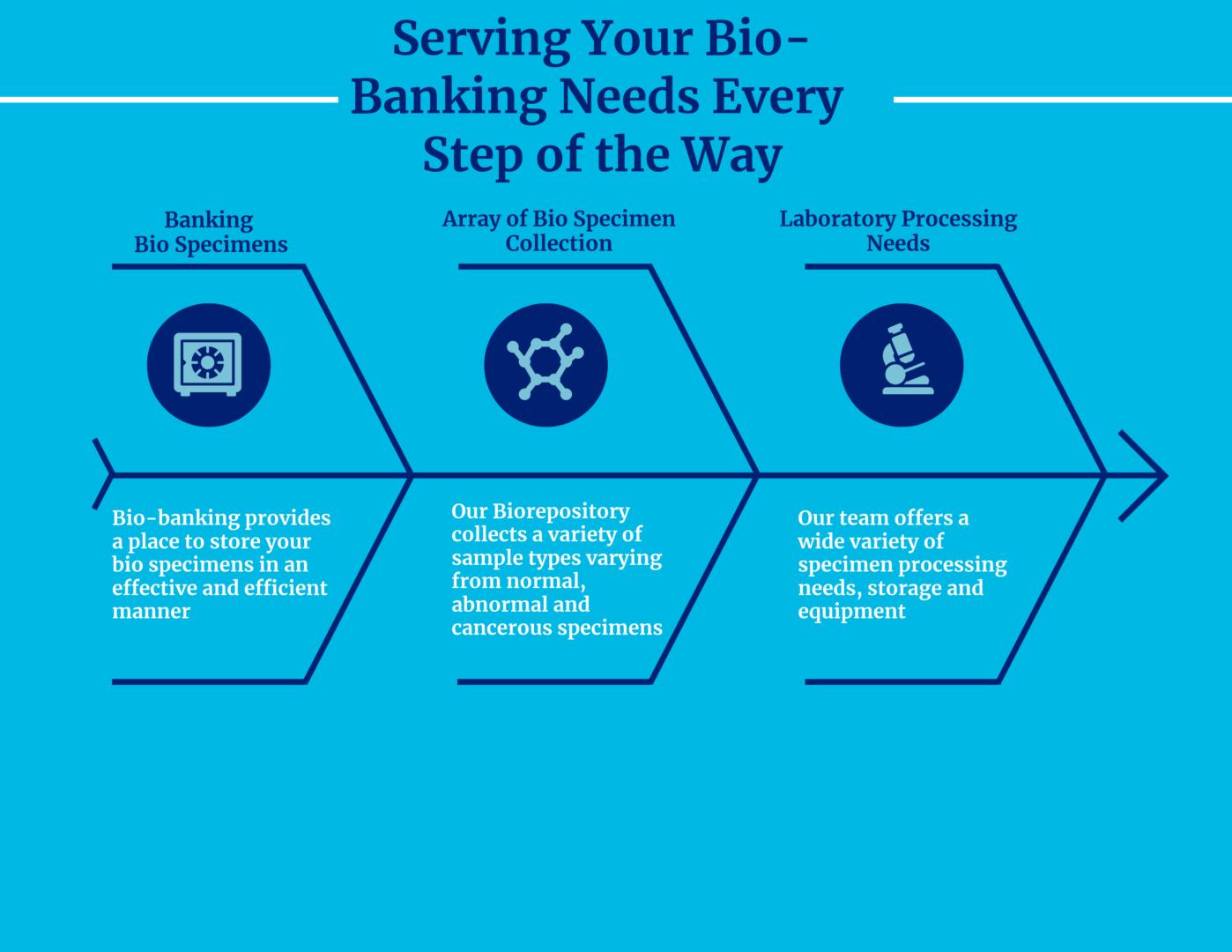 Bio R Chart